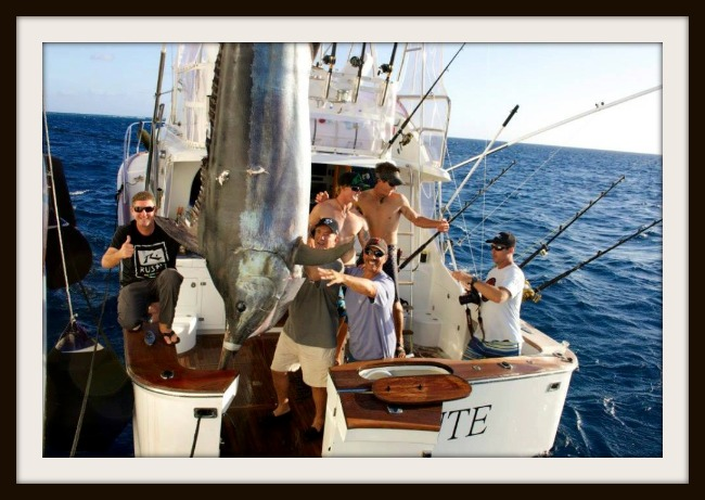 Levante 1016 lbs. Black Marlin 2014